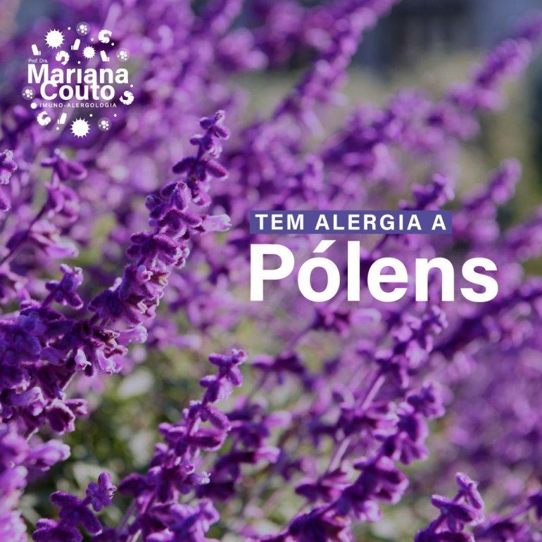 Alergia aos pólens - como tratar?