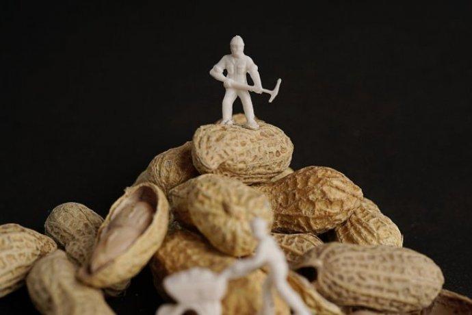 Aprovado tratamento para alergia ao amendoim