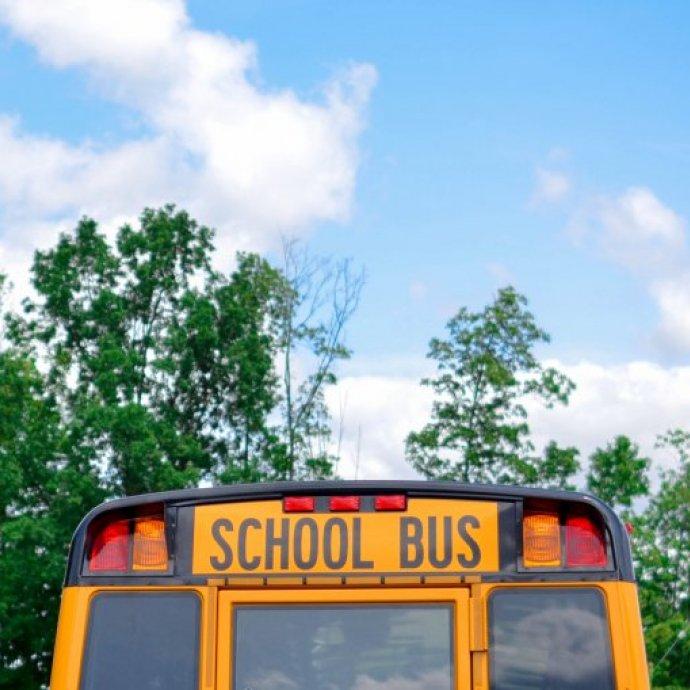 A escola e as alergias alimentares… Dicas para os pais